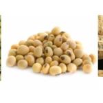 Jual Mesin Pulp Grinder Pembubur Kacang-Kacangan di Solo